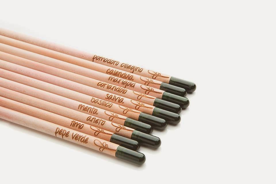 sprout-pencil-piantine
