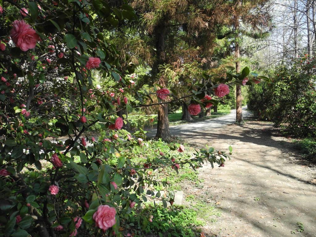 giardino-castello-miradolo
