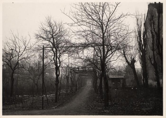 vigna-leonardo-vinci-1920
