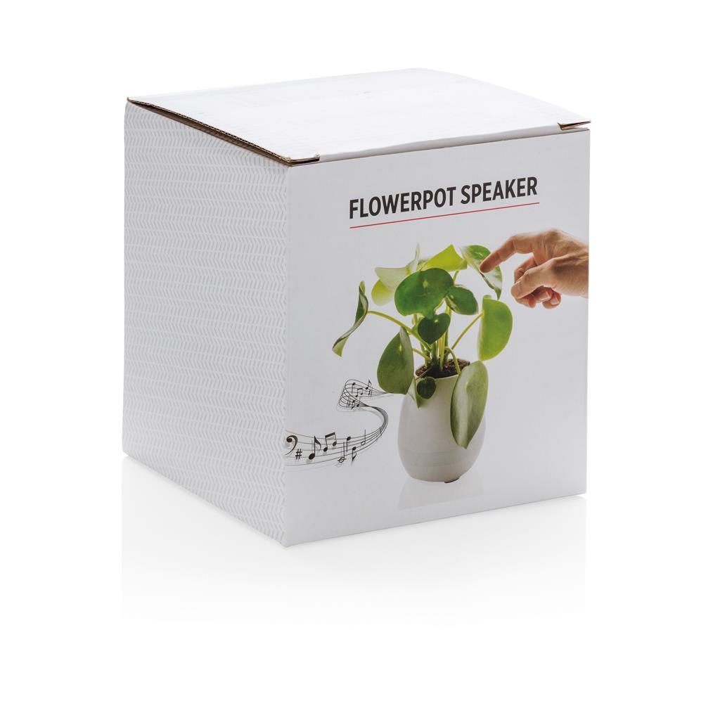 Packaging pianta speaker