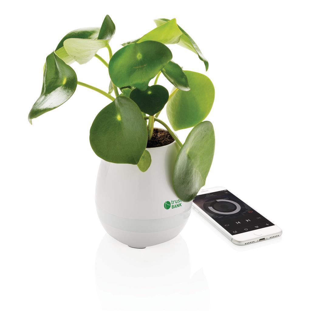 Esempio di personalizzazione della pianta speaker