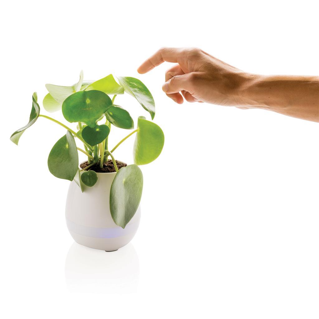 Esempio di funzionamento della pianta speaker