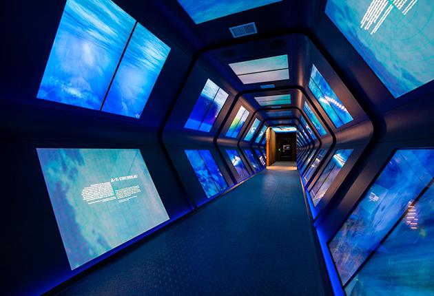 museo-oceanografico-monaco-interno