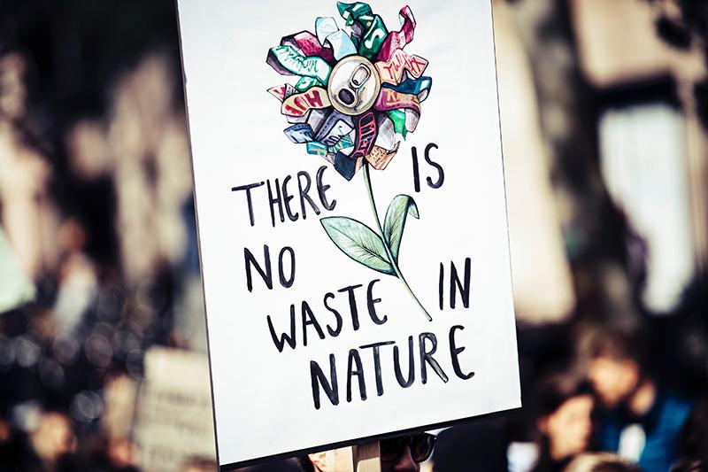 manifesto green marketing