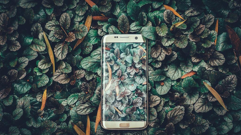 telefono con sfondo texture foglie