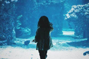 bambina di spalle davanti ad un acquario