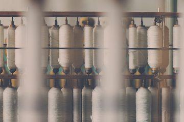 filari di cotone biologico, uno dei tessuti sostenibili per eccellenza